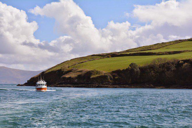 Passeio de barco para conhecer Fungie é imprescindível em Dingle. Photo by Suhail Parvez on Unsplash