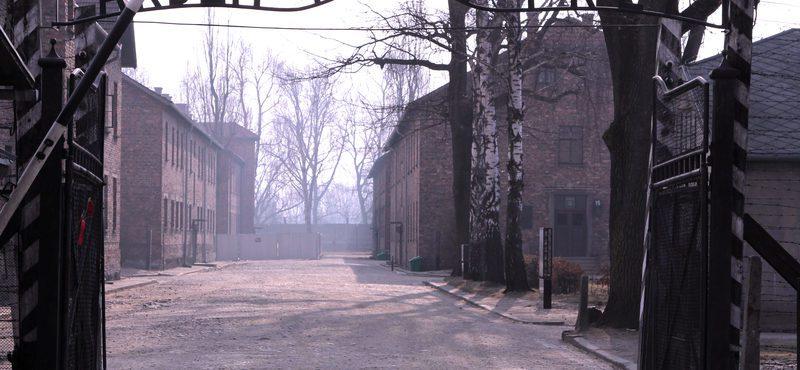 Pra onde ir! Auschwitz, Polônia