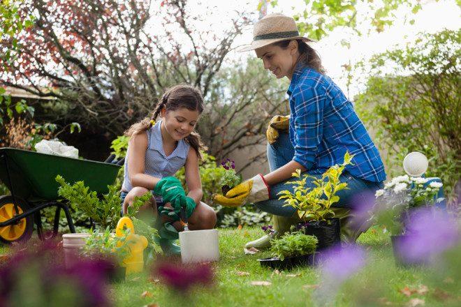 Trabalhar como voluntário em comunidades rurais e fazendas é proposta do Wwoof. © Wavebreakmedia Ltd | Dreamstime.com