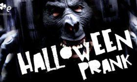 Pegadinha de Halloween
