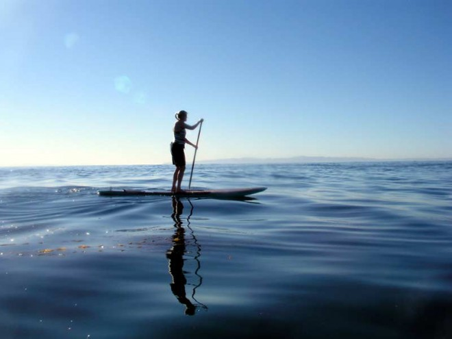 Reprodução: Freedom Surf School