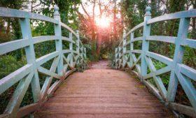 Cinco parques para curtir o verão em Dublin