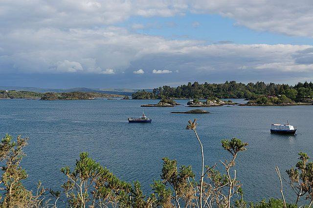 Porto de Glengarriff em Bantry Bay, Condado de Cork. Créditos: Wikimedia.