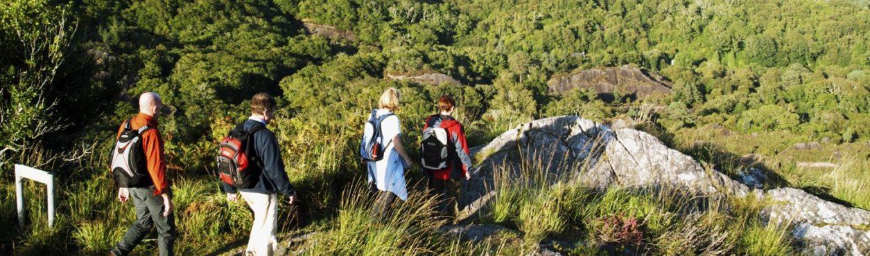 Glengarriff na Irlanda: Para os amantes da natureza