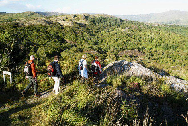 Caminhada por uma das inúmeras trilhas. Créditos: glengarriffpark.com.