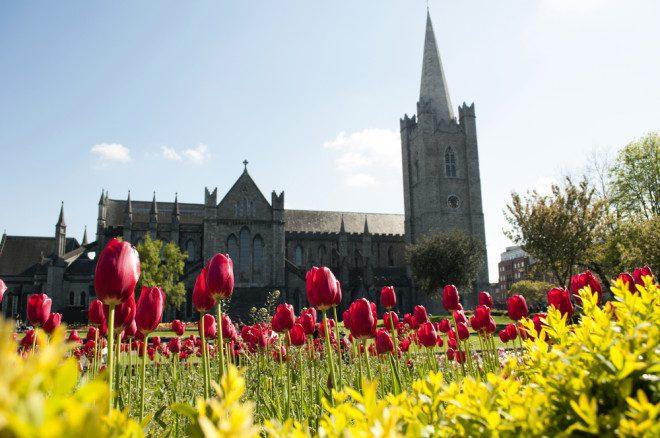 Vista do jardim da Catedral de Saint Patrick. Crédito: rodrigobellizzi/depositphotos