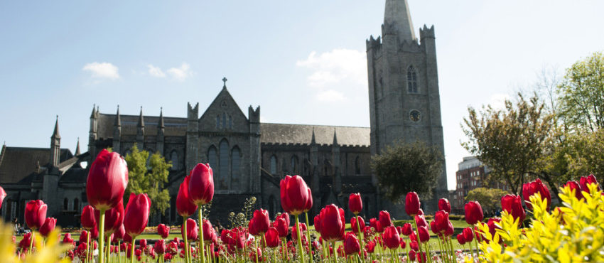 A primavera chegou na Irlanda