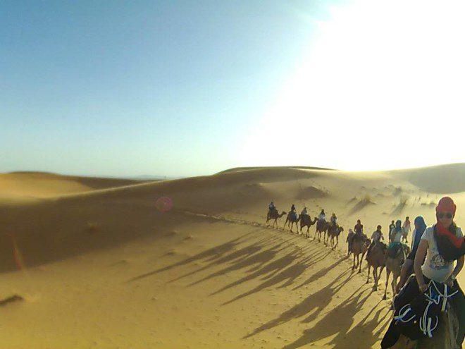Artigo_06_Juliana_Marrocos (6)