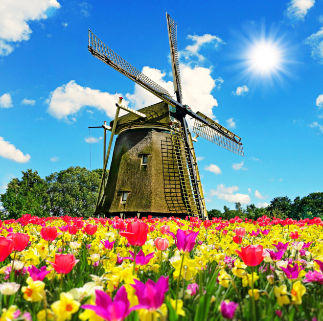 primavera.shutterstock_565321117