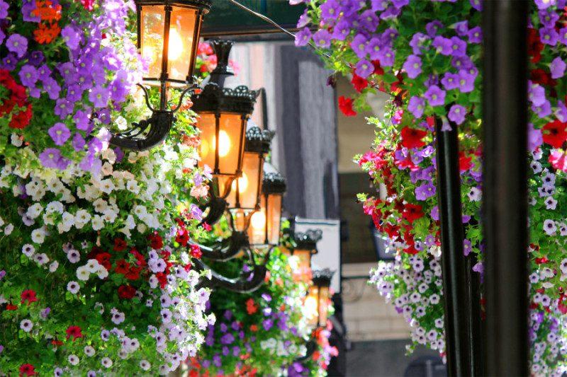 Primavera em Dublin. Foto: Shutterstock