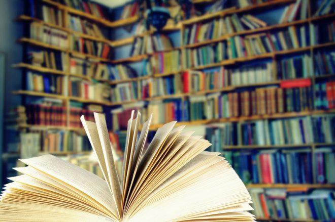 Nas bibliotecas públicas, o acesso é gratuito a todos. Foto: Rigmanyi | Dreamstime.com
