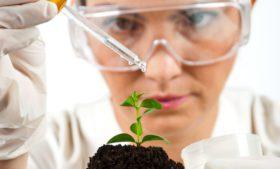 Irlanda têm vagas para biotécnicos e químicos