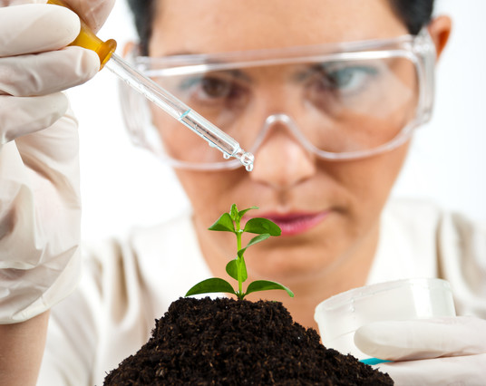 Agronegócio é um dos setores para biotecnologia. Crédito Gabriel Blaj | Dreamstime