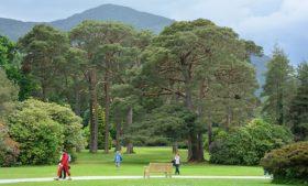 Melhores parques para conhecer e se divertir na Irlanda