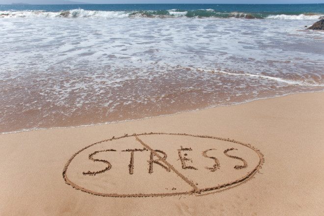 Trabalho casual aumenta tolerância ao estresse; Foto: Imagegeneration | Dreamstime