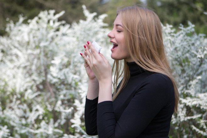Recomenda-se toda medicação agora, para minimizar a presença das alergias na Primavera.© Adamgregor | Dreamstime.com