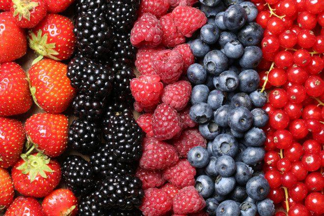 """A """"família"""" berry pode ser encontrada nos principais mercados por um preço justo. Foto: Boarding1Now/Dreamstime"""