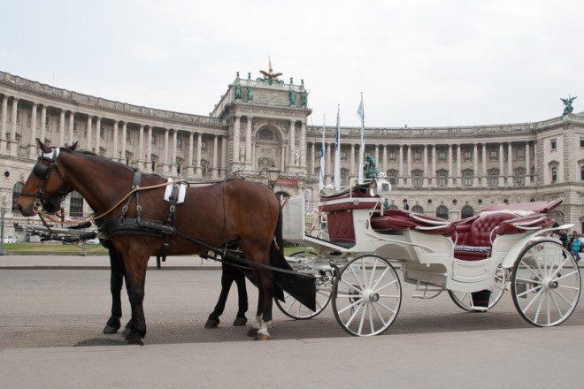 Viena tem passeio de carruagem. Crédito: Dreamstime