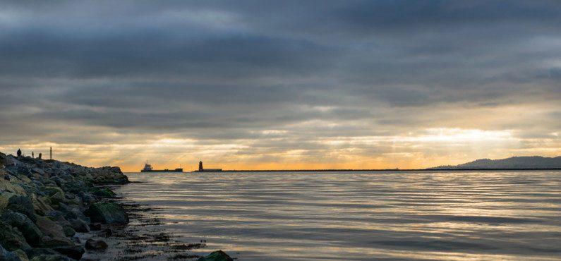 Bull Island: uma reserva natural localizada na baía de Dublin