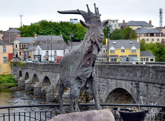 Festival em Limerick coroa o bode Puck .Foto: Steven Cukrov/Dreamstime