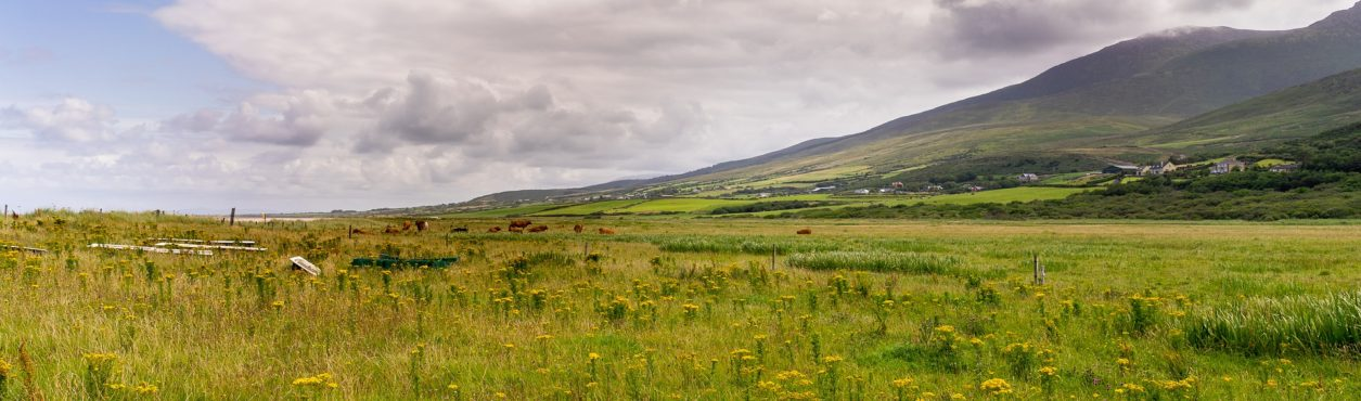 Irish Forecast: fim de semana será de calor na Irlanda
