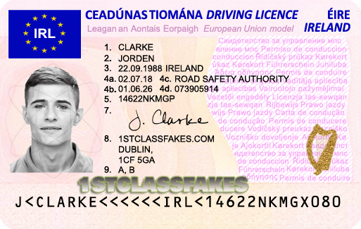 Carta de habilitação irlandesa (Driving License) tem forma de cartão. Foto: Divulgação