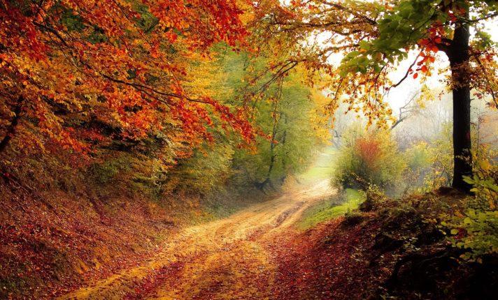 Quando começa o outono na Irlanda em 2020?