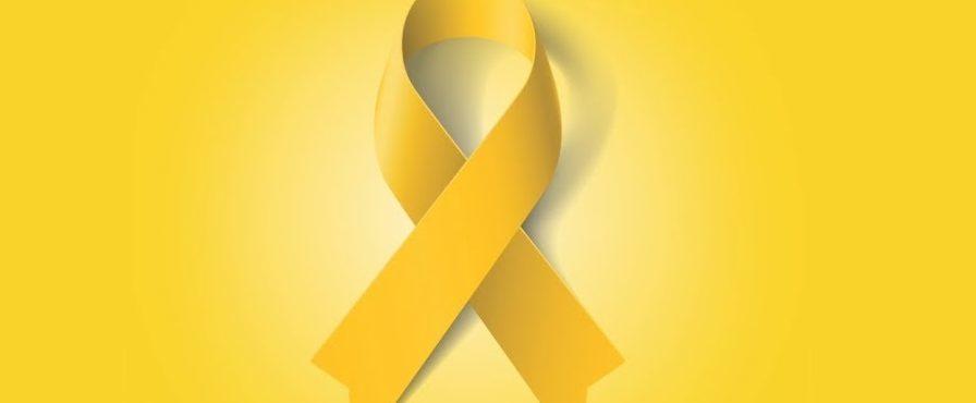 Psicólogos brasileiros realizam workshop sobre o Setembro Amarelo em Dublin