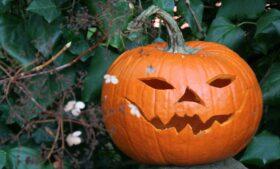 10 curiosidades sobre o Halloween