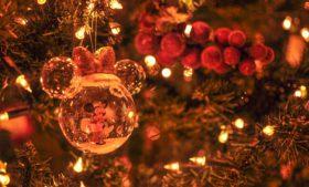 Saiba onde encontrar árvores de Natal nas ruas de Dublin