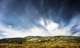 Primeira semana de fevereiro terá 'clima de primavera' na Irlanda