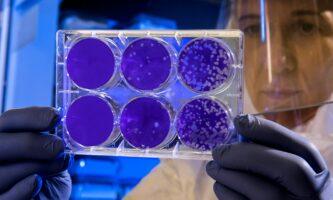 Coronavírus: Irlanda chega a 10 dias sem mortes, mas casos aumentam