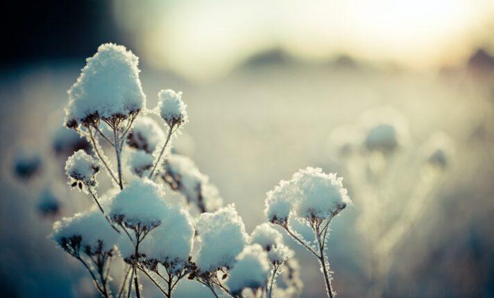 Interior da Irlanda registra neve e previsão é de muito frio no fim de semana